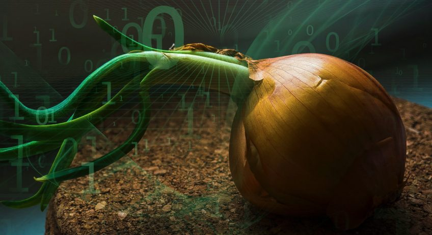 Demystifying The Dark Internet Peeling Back The Layers Of Tor's Onion Services